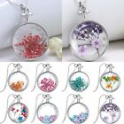 Silver Natural Real Dried Flower Round Glass Locket Pendant Necklace Jewellery