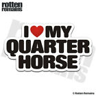 Quarter Horse I Love My Decal Rodeo Horses Trailer Car Gloss Sticker HGV