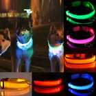 Pet Dog Cat Adjustable LED Color Glow In Dark Light Up Kitty Puppy Neck Collar
