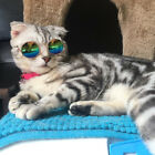 Cat Sunglasses Pet Accessories Summer Dogs Cats Glasses Grooming Black Green
