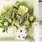 Emma Bridgewater Greeting Card