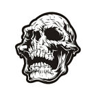 Skull Decal Skeleton Skulls Motorcycle Car Truck Gloss Sticker V3 (LH) HVG