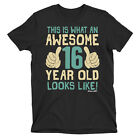 Teenager T-shirt Awesome 16 Year Old Looks Like Birthday Gift Eco