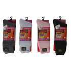 Women's Socks Polar Extreme Insulated Thermal Brushed Socks 4 Colors Size 9-11Socks - 163588