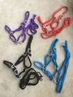 Mule tape horse halter & lead  flat braided nylon cord assorted colors