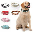 Leather Spiked Studded Rivet Dog Collar for Puppy Small Dogs Chihuahua Collar le