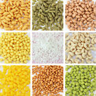 10g Clay Sprinkles for Filler Supplies Mud Decoration Toys for Children Kids image