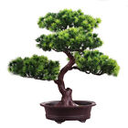 Accessories Home Simulation Decorative Bonsai Diy Potted Plant Pine Tree Office