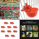 Kyпить 5/10/20/30 Pcs Poultry Water Drinking Cups Chicken Hen Plastic Automatic Drinker на еВаy.соm