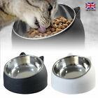 200ml Pet Cat Food Bowl Raised No Slip Stainless Steel Tilted Feeder Bowl Useful