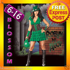 CP1 Ladies Thief Robin Hood Fancy Dress Costume + Hat