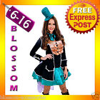 J69 Ladies Mad Hatter Fancy Dress Up Tea Party Alice In Wonderland Hens Costume