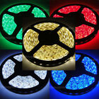 12V Red/Blue/Green/Cool/WarmWhite 5M IP65 Waterproof 3528 SMD 300LED Strip Light