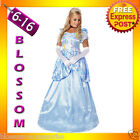 B61 Deluxe Disney Cinderella Princess Costume Fairy Tale Fancy Dress Ball Gown