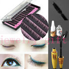 Hot Pro. False Eyelashes Thick Curl Eye Lash Glue Primer Remover Extension Tools