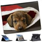 Brown Fluffy Puppy Sat Inside Santa Hat Christmas Leather Case For iPad 2, 3 & 4