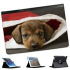 Brown Fluffy Puppy Sat Inside Santa Hat Christmas Leather Case For iPad Mini