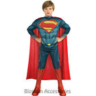 CK193 Man Of Steel Superman Hero Licensed Child Boys Book Week Costume Outfit