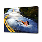 LARGE SWIMMING IN THE ROAD CANVAS PRINT EZ1050