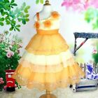 NEW Flower Girl Wedding Pageant Party Bridesbaid Dress Wears Orange SZ 5-10 Q359