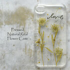 MPY Dandelion Pressed Real Flower Bling Floral Hard Skin Case For iPhone Samsung