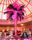Внешний вид - 10/20/50Pcs 6-24Inch Natural Ostrich Feathers Wedding Party Decor Multiple Color