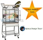 LIBERTA DRAKE MEDIUM OPEN TOP PARROT SENAGAL CONURE BIRD CAGE ON CASTORS 3 TOYS