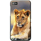 African Lion Big Cat Hard Case For Blackberry Z10