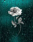 Teal Home Decor/Decorative Bathroom/Bedroom Matted Wall Art Picture