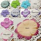 20 Mulberry Flowers for Scrapbooking Card Making Embellishment
