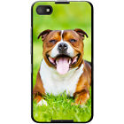 Staffordshire Bull Terrier Staffy Staff Dog Hard Case For Blackberry Z30