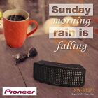 New PIONEER XW-BTSP1 Portable Wireless Speaker Bluetooth 4.0 NFC Technology