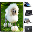 Poodle Caniche Barbone Fluffy Dog Folio Cover Leather Case For Apple iPad