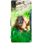 Orangutan Monkey Primates Animal Hard Case For Sony Xperia M4 Aqua