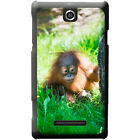 Orangutan Monkey Primates Animal Hard Case For Sony Xperia E