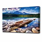 LARGE DRIFTWOOD CANVAS PRINT 2129