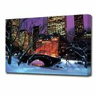 LARGE CENTRAL PARK CANVAS PRINT 2317