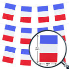 FRANCE BUNTING 33FT COUNTRY NATIONAL FLAG PARTY DECORATION PVC ALL WEATHER 10M