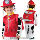 CK789 Paw Patrol Boys Marshall Cartoon Fireman Fancy Dress Costume Kids Outfit