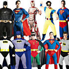 Superhero Mens Fancy Dress Marvel Comic Book Character Halloween Adults Costume