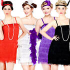 1920s Flapper Girl Ladies Fancy Dress Charleston Jazz 20s Gatsby Costume Outfits