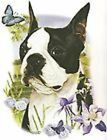 Boston Terrier Burnett Pick Your Size T Shirt Youth Small-6 X Large image