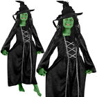 GIRLS GREEN WICKED OR GOOD WITCH BOOK FILM CHARACTER CHILDS FANCY DRESS COSTUME