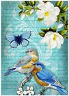 Bluebirds Floral Collage Crazy Quilt Block Multi Szs FrEE ShiP WoRld WiDE (B11
