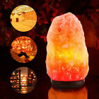 Lots Crystal Himalayan Natural Carved Salt Night Lamp Air Purifier Wall Light