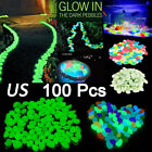 100x Glow In The Dark Pebbles Stone Home Garden Walkway Aquarium Fish Tank Decor