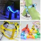 LED Glow Flash Dog Belt Harness Leash Tether Pet Light-up Safety Chest Collar HH