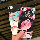 Korean Style Flamingo Scrub Ultra thin Case For iPhone6/7 Protection