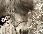 Rustic Farmhouse Horse Daisy Flowers Country Wall Art Home Decor Matted Picture