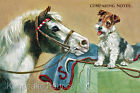 Horse & Pup Comparing Notes Quilt Block Multi Sizes FrEE ShiPPinG WoRld WiDE